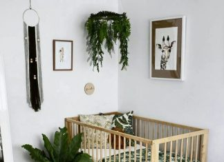 15 gorgeous plants ideas for baby nursery momooze.com