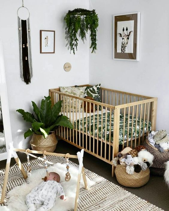 15 Gorgeous Plants Ideas For Baby Nursery Momooze