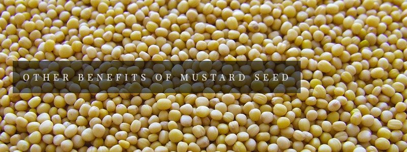other benefits of mustard seed