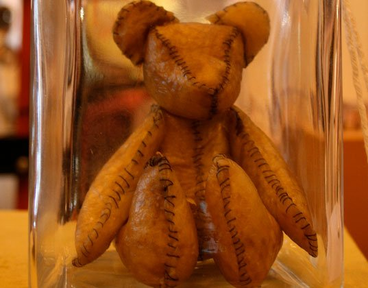 placenta teddy bear