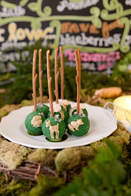 Enchanted Forest Party Theme Ideas for Kids Birthday cake pops momooze.com online magazine for moms