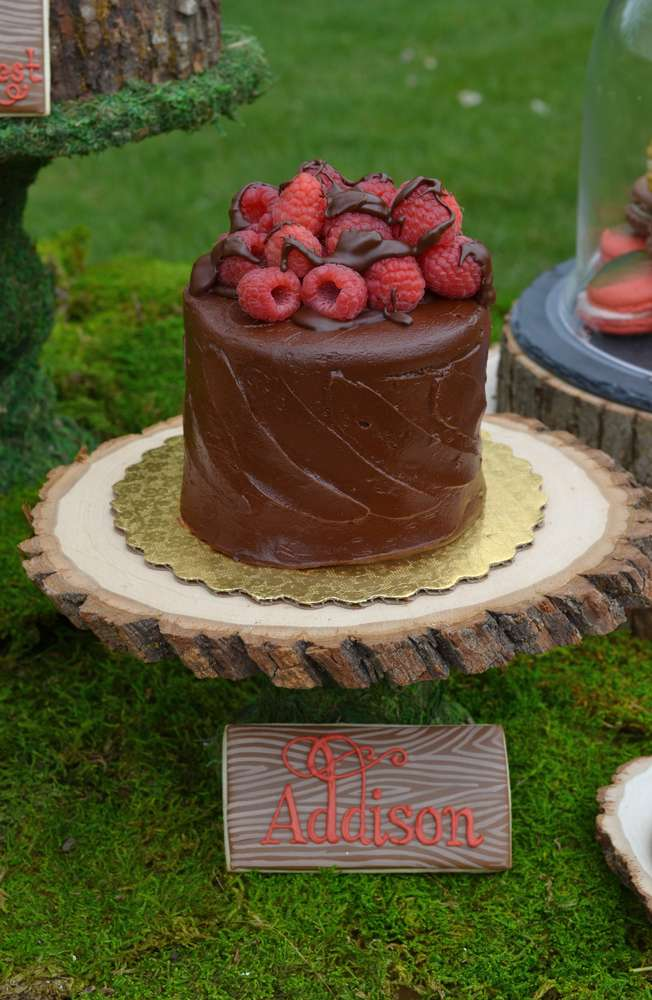 Enchanted Forest Party Theme Ideas for Kids Birthday chocolate cake raspberries momooze.com online magazine for moms