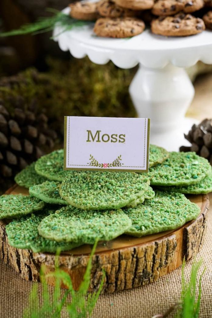 Enchanted Forest Party Theme Ideas for Kids Birthday moss cookies momooze.com online magazine for moms