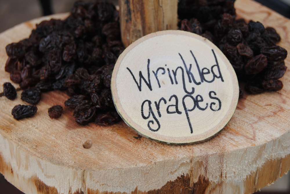 Enchanted Forest Party Theme Ideas for Kids Birthday raisins wrinkled grapes momooze.com online magazine for moms