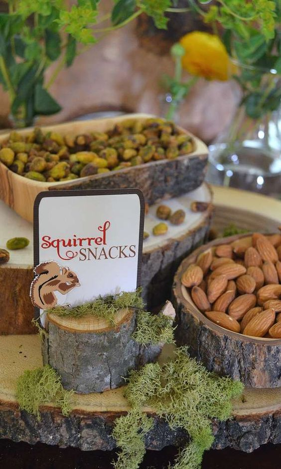Enchanted Forest Party Theme Ideas for Kids Birthday squirrel snacks nuts momooze.com online magazine for moms