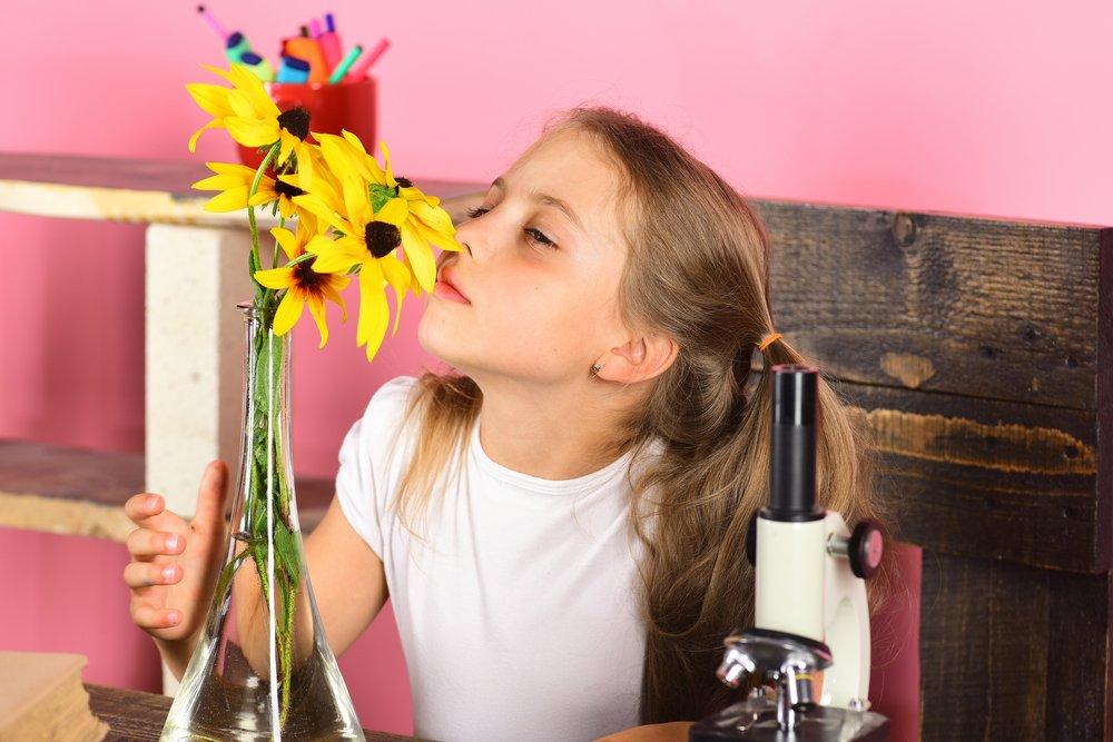 Flowers Drink Water