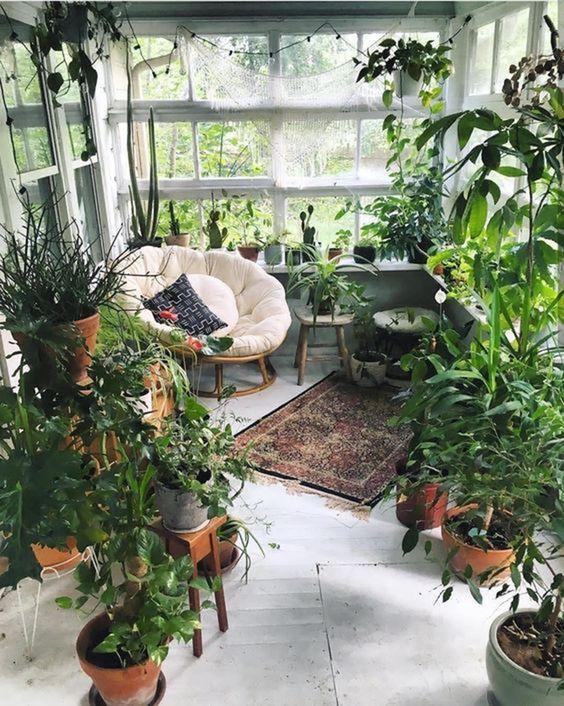 Indoor Garden Goals