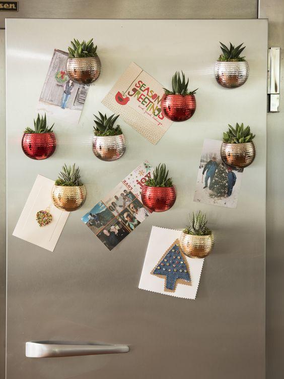 fridge magnet succulents