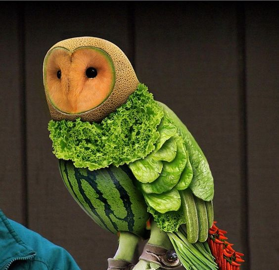 getting creative with fruits and vegetables fruit and veggie owl momooze.com picturesque playground for moms