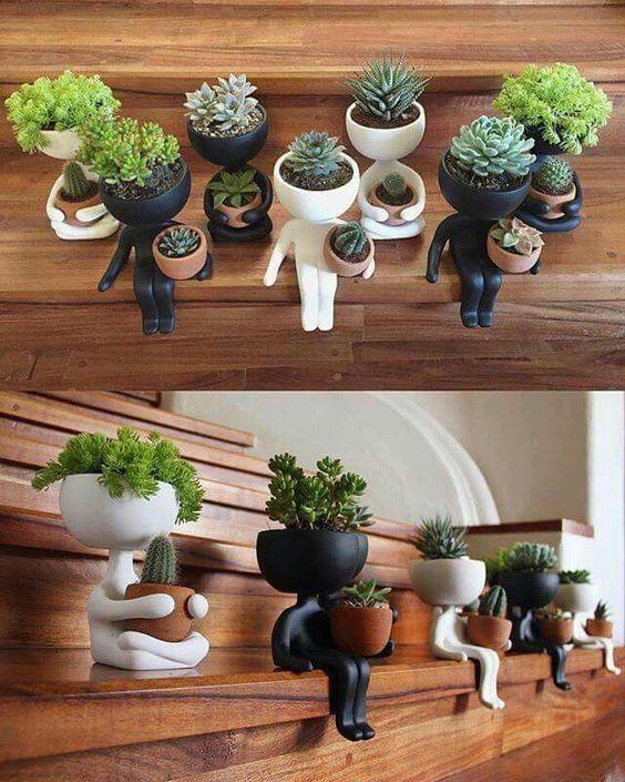 human succulent planters