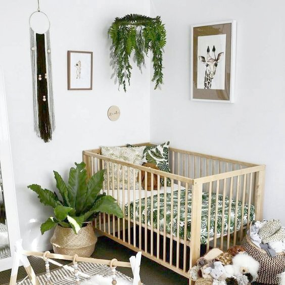 plants for baby nursery